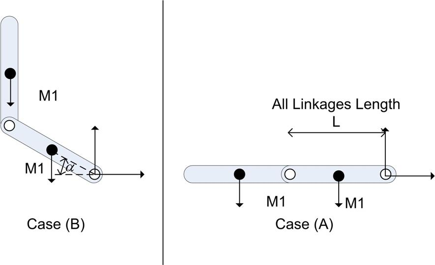 Linkages Demonstration